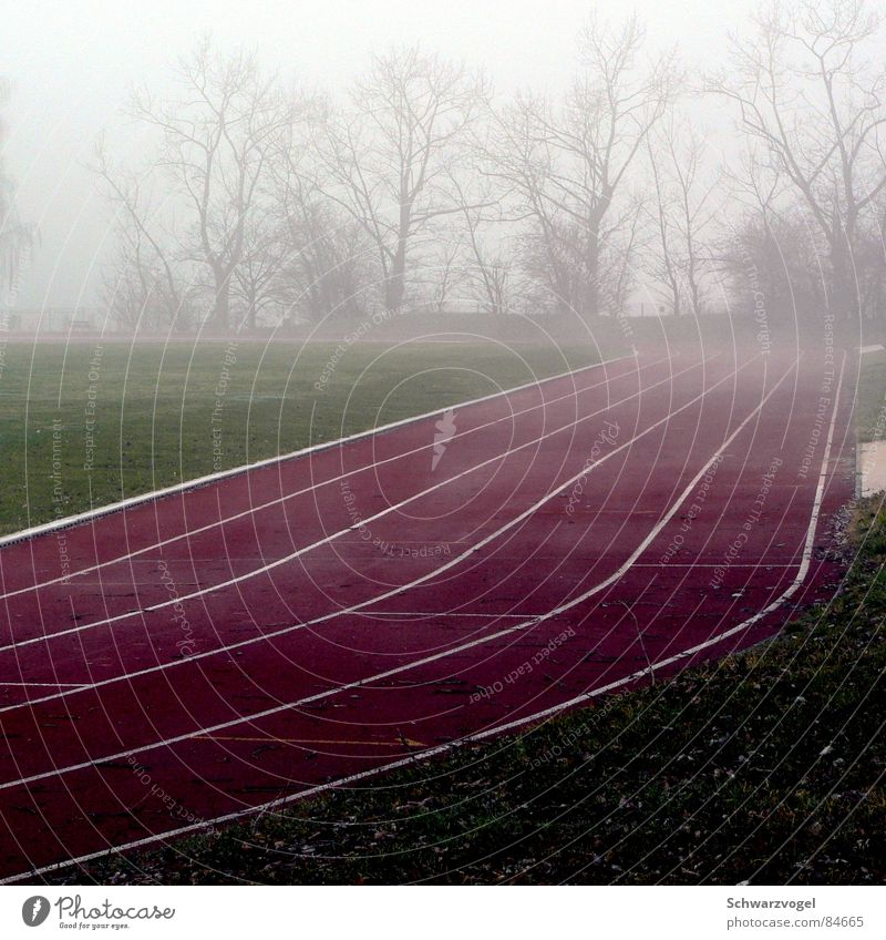 Green Red Loneliness Sports Grass Sadness Fog Walking Places Lawn Sneakers Stadium Jogging Resume Vail Ski run