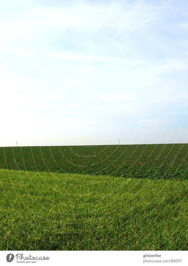Sky Green Meadow Spring Field Lawn Americas Harvest Fairy Extend