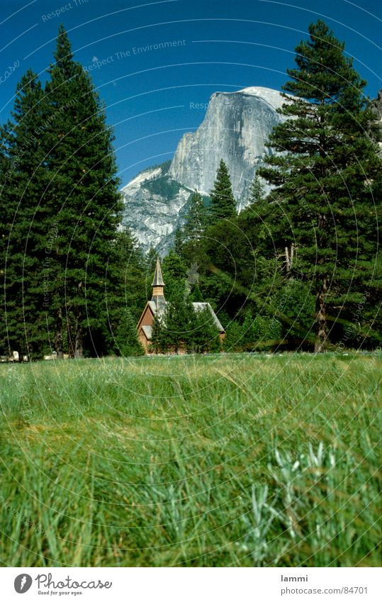 enjoy the view Meadow Vantage point National Park Yosemite National Park Vacation & Travel Leisure and hobbies Glade Clearing Relaxation Green Grass Appearance