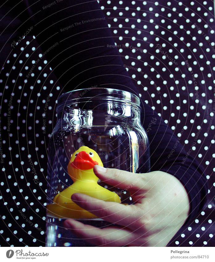 my little friend 2 Hand Embrace Friendship Dark Black Fingers Yellow Squeak Reflection Bird Duck Arm Glass Point Swimming & Bathing