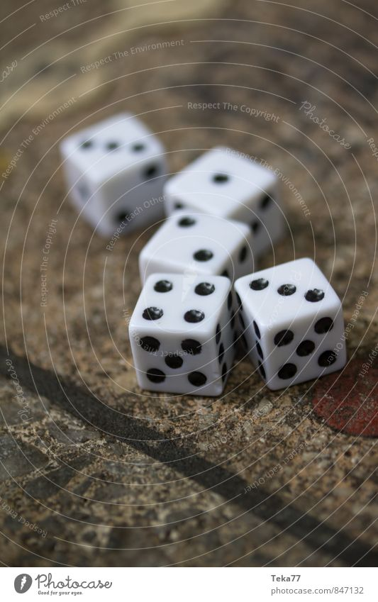 SEVEN - The dice have been cast Stone Sign Digits and numbers Contentment Happy Communicate Dice Playing Board game Colour photo Exterior shot Close-up Detail