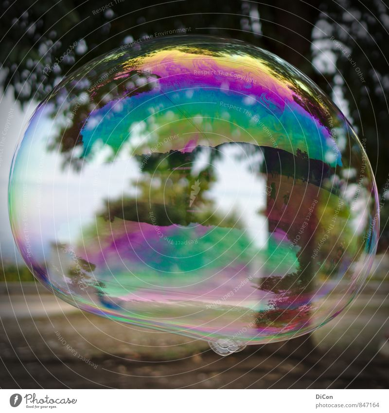 Big dreams Soap bubble Playing Dream Happiness Colour photo Exterior shot Day Reflection Central perspective