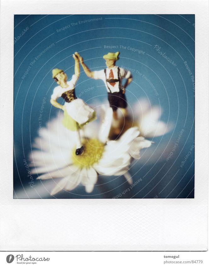 Costume Flower Blue Joy Polaroid Blossom Happy Dance Together Dance event Happiness Joie de vivre (Vitality) Music Hat Bavaria Tradition