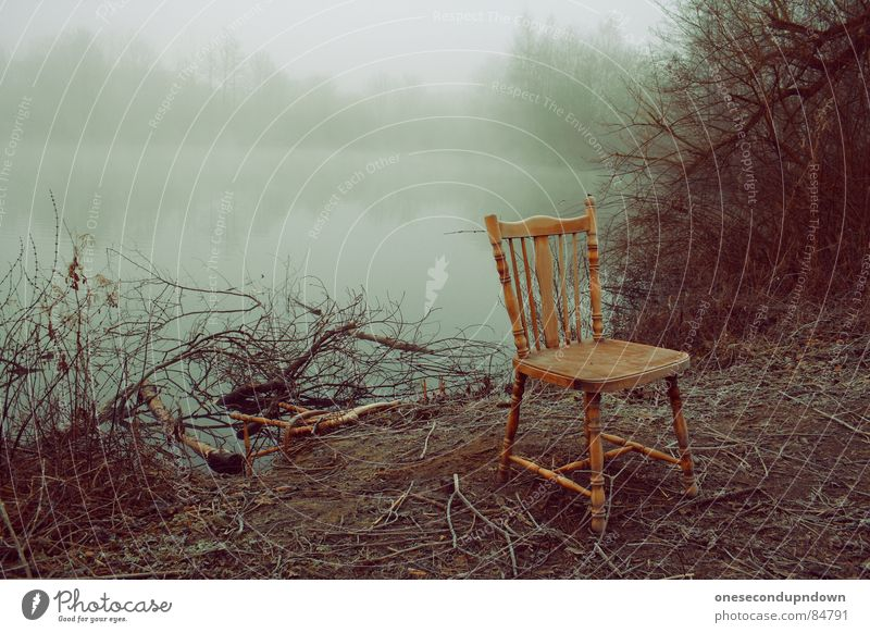Nature Water Tree Winter Loneliness Dark Cold Gray Sadness Lake Landscape Ice Fog Empty Chair Exceptional