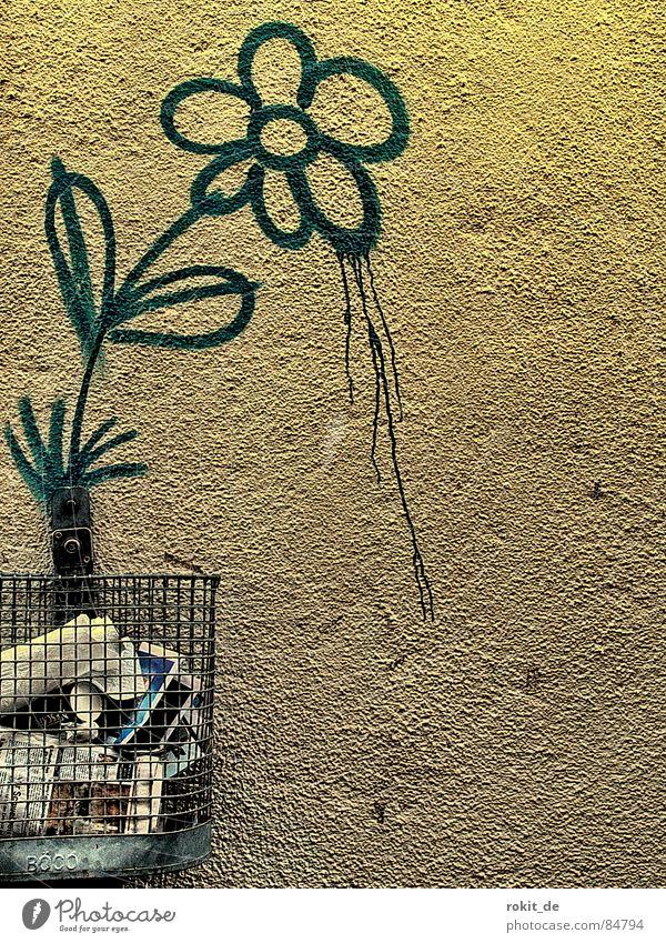 Flower Colour Wall (building) Blossom Graffiti Metal Walking Growth Drop Trash Transience Stalk Blossoming Dandelion Bouquet Train station
