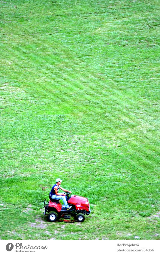 Human being Green Beautiful Red Meadow Grass Small Art Work and employment Field Large Places Growth Perspective Change Stripe