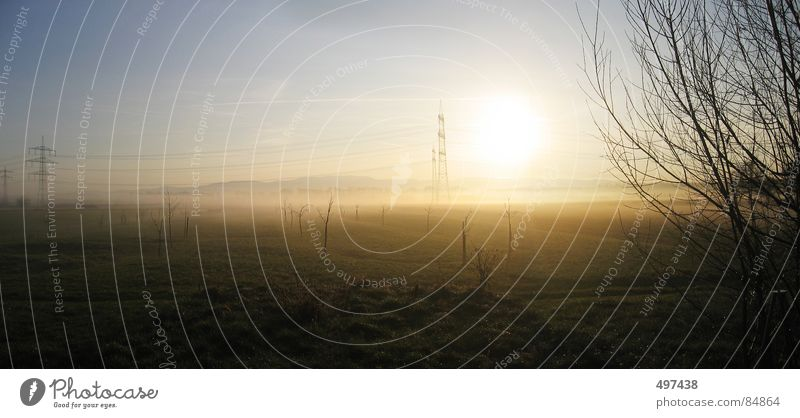 Sun Landscape Fog Bushes Electricity pylon Black Forest Hornisgrinde