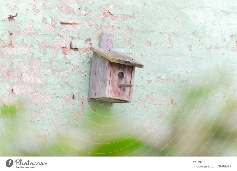 NestingBox Nature Wall (building) Bird Protection Brick Entrance Painted Crate Home Weathered Camouflage Ornithology