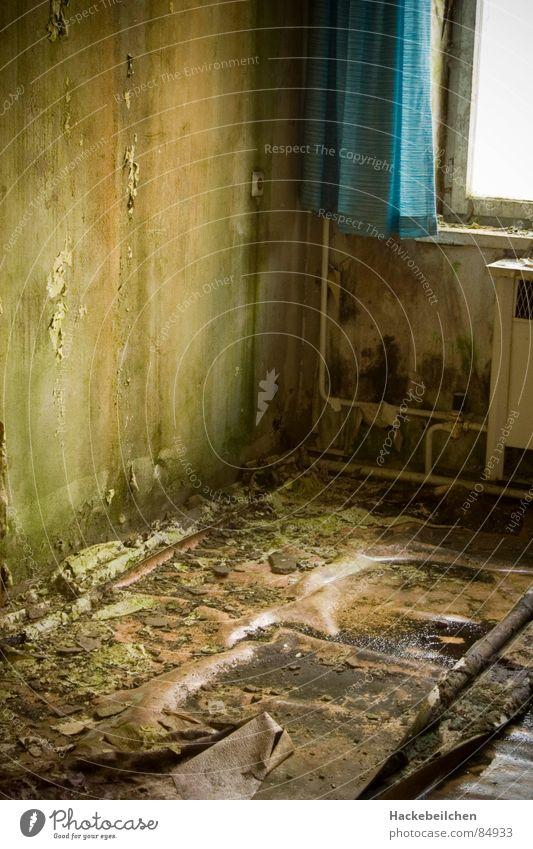 Green Window Wall (building) Gray Room Dirty Industry Living or residing Drape Disgust Mushroom Mold Bland