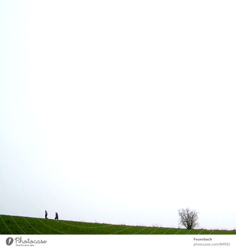 Human being Sky Winter Loneliness Meadow Autumn Mountain Grass Couple Landscape 2 Going Hiking Horizon In pairs Bushes