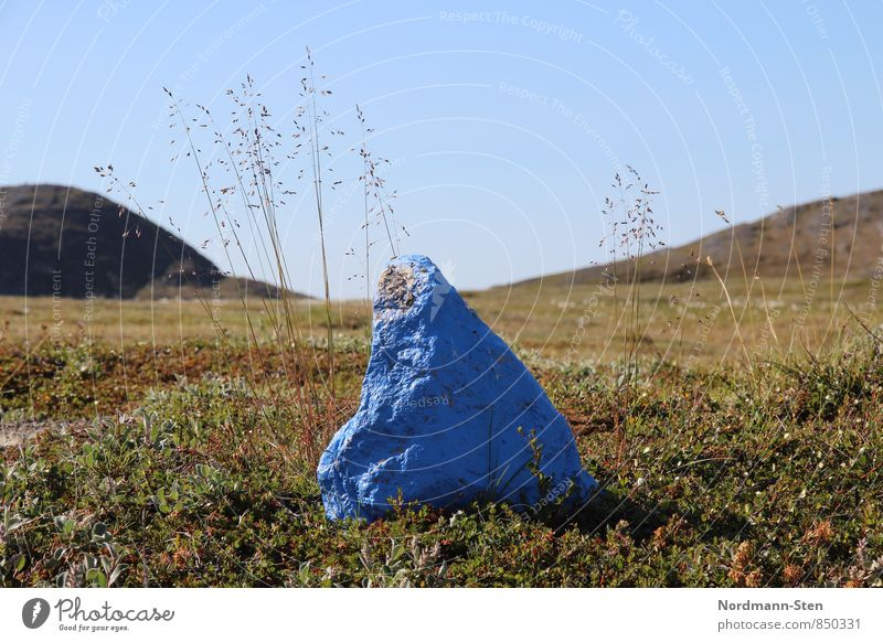 Stone, blue Hiking Cloudless sky Grass Hill Tundra Signs and labeling Loneliness Colour photo Exterior shot Deserted Shallow depth of field Worm's-eye view