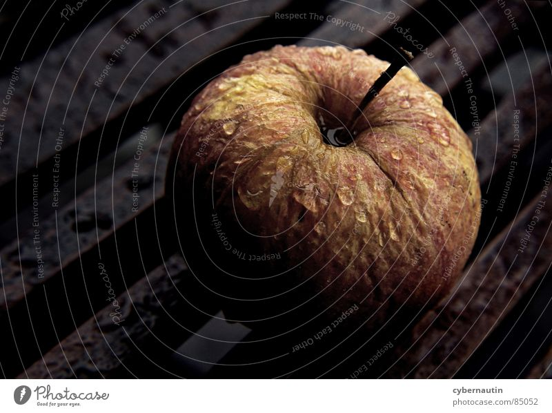 shriveled apple in the rain Dried up Wooden table Rain Autumnal colours Fruit Thunder and lightning Apple