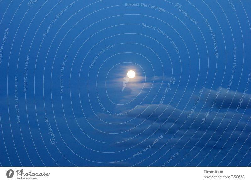Nature Blue Summer White Clouds Emotions Lighting Esthetic Joie de vivre (Vitality) Simple Moon Night sky Moonlight Full  moon
