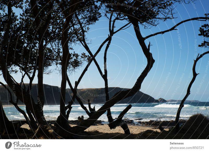 Wild Coast Vacation & Travel Tourism Trip Adventure Far-off places Freedom Summer Summer vacation Sun Sunbathing Beach Ocean Waves Environment Nature Sky