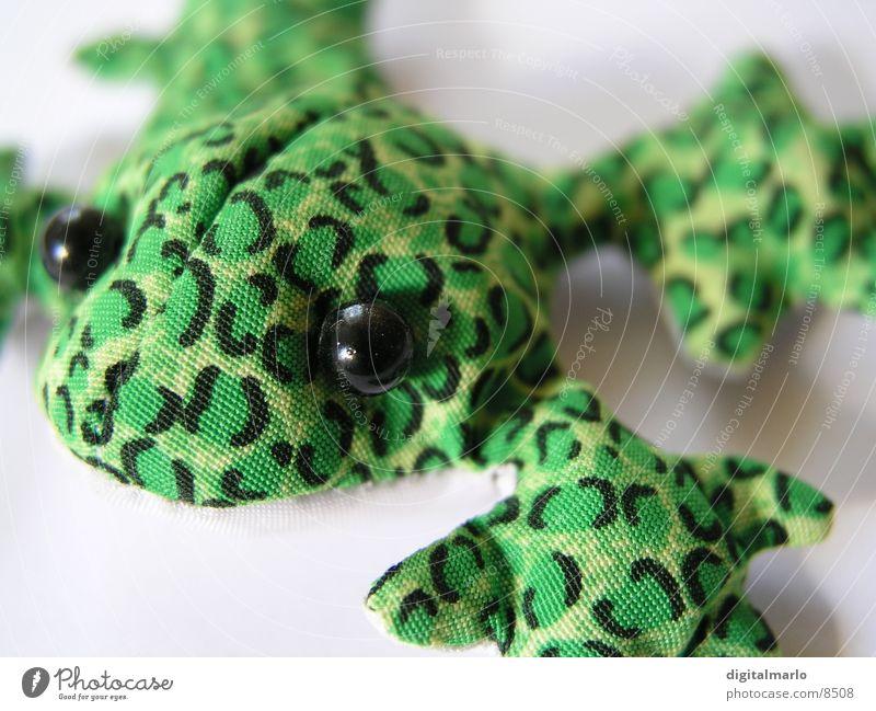 froggy Cloth Animal Green Small Frog Macro (Extreme close-up)