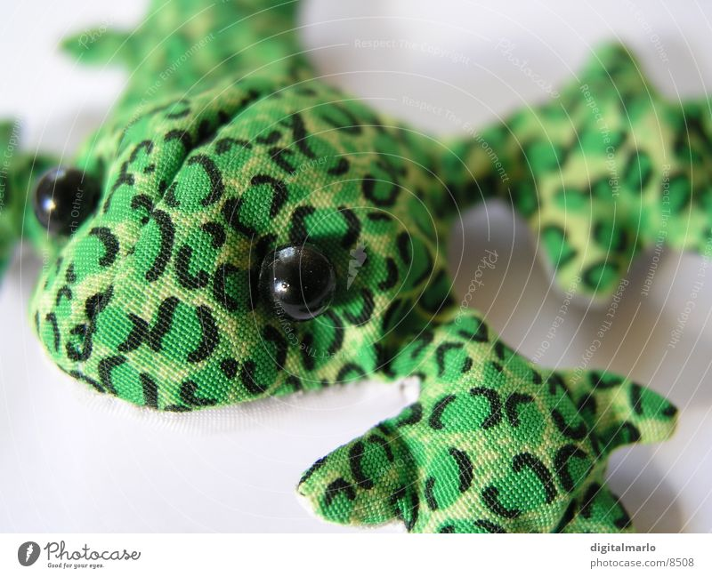 Green Animal Small Cloth Frog