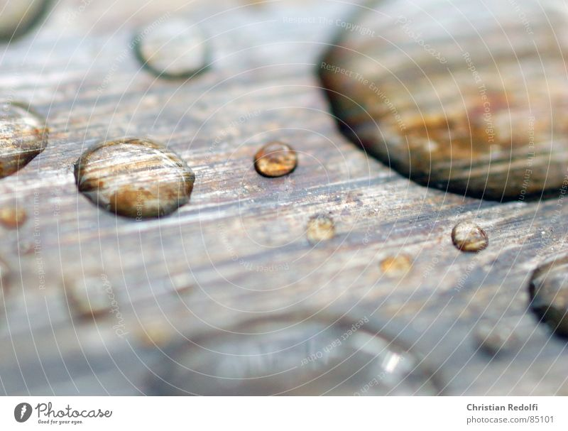 Drops Drops of water Still Life Iron Macro (Extreme close-up) Calm Scratch mark Enlarged Drive Close-up Navigation droplet Magnifying glass Water