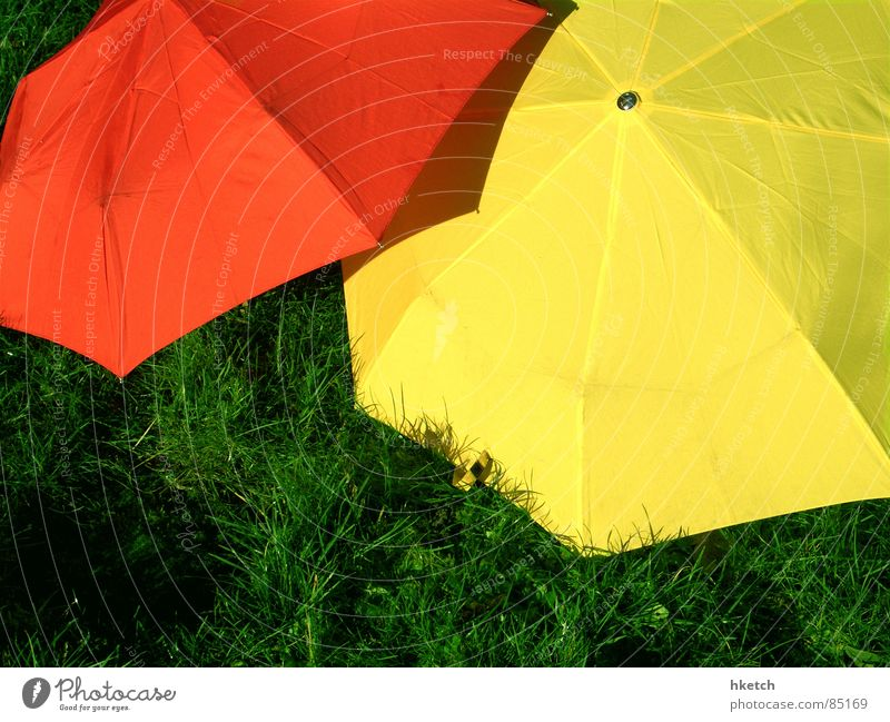 Green Red Yellow Meadow Grass Spring Rain Wet Safety Lawn Umbrella Hide Thunder and lightning Traffic light Watertight All-weather