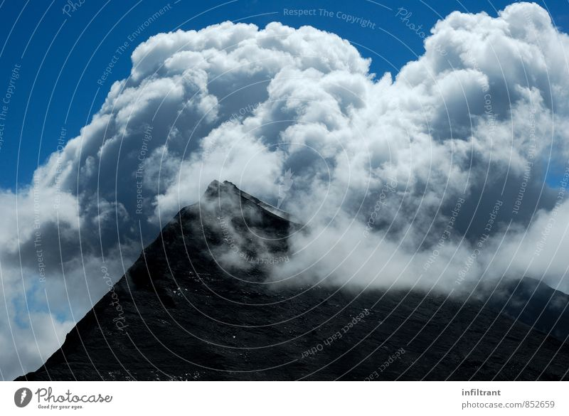 Peaks in clouds Mountain Hiking Sky Clouds Alps Blue Black White Adventure Freedom Environment Colour photo Exterior shot Deserted Copy Space bottom Day