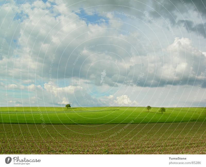 under clouds, above ground Clouds in the sky Bavaria Field Agriculture Landscape Nature Rain Sky