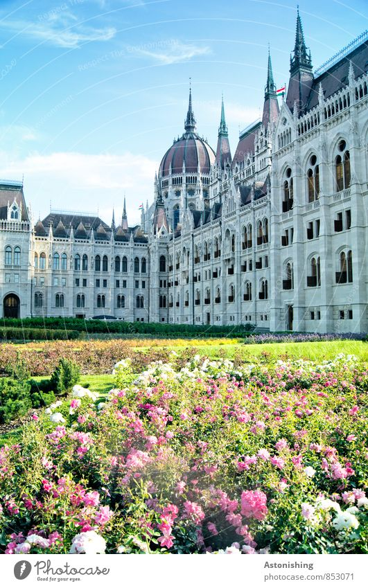 Parliament in Budapest Nature Landscape Plant Sky Clouds Summer Weather Beautiful weather Flower Grass Hungary Town Capital city Park Places Manmade structures