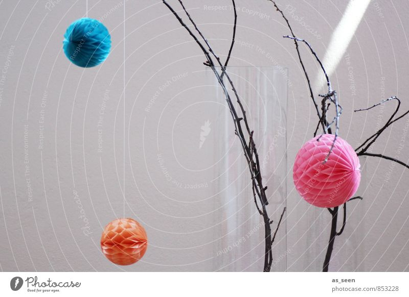 deco Elegant Style Design Living or residing Flat (apartment) Interior design Decoration Branch Hang Esthetic Hip & trendy Round Orange Pink Turquoise Colour