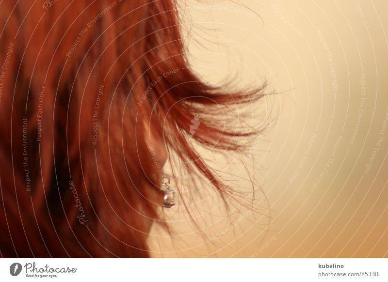 Red Head Hair and hairstyles Ear Media Earring Hairdressing