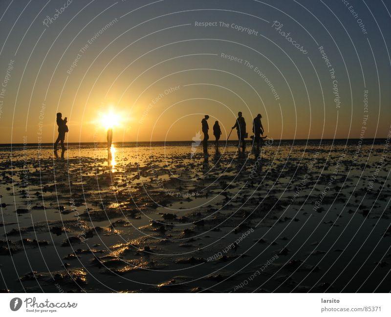 Human being Water Sky Sun Beach Group Coast Navigation Dusk Mud flats