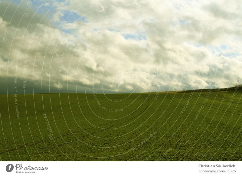 Sky Green Clouds Meadow Grass Landscape Air Field Lawn Pasture Agriculture Paradise Planet Media Contract Green space