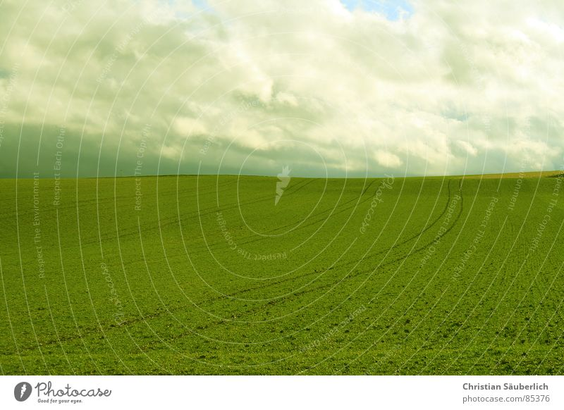 Sky Green Clouds Meadow Grass Landscape Air Field Lawn Pasture Agriculture Paradise Planet Contract Green space