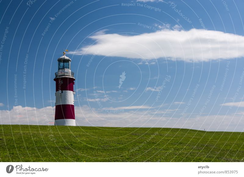 Smoking Lighthouse Air Clouds Summer Beautiful weather North Sea Tower Tourist Attraction Monument Navigation Harbour Freedom Leisure and hobbies Nostalgia