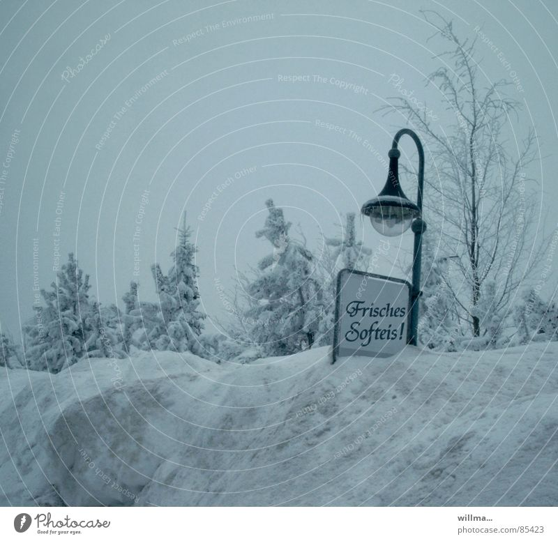 Blue Winter Cold Snow Funny Ice Signs and labeling Fresh Frost Street lighting Advertising Trade Humor Soft ice cream