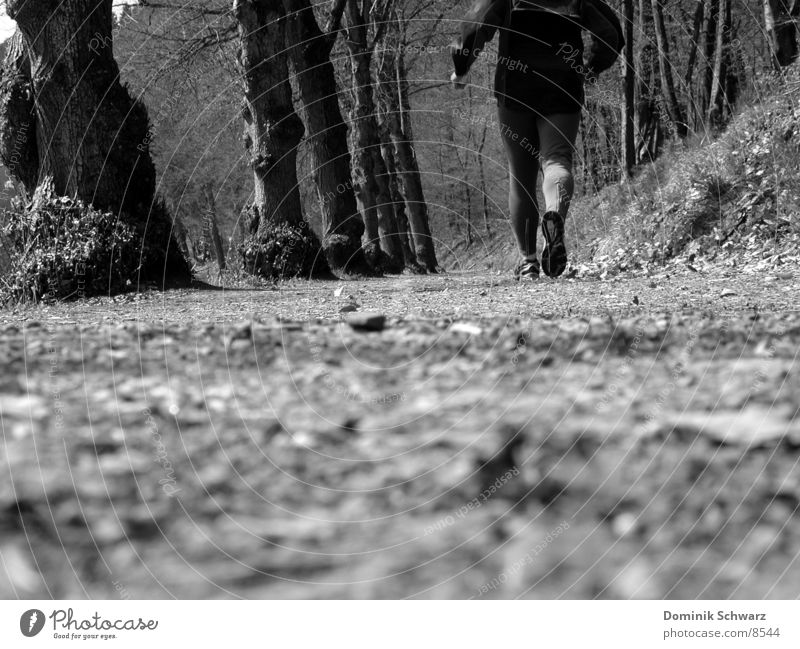 gone well Forest Jogger Jogging Leaf Tree Man Footwear Calf Sports Lanes & trails Walking walker Legs Musculature Running sprint Black & white photo