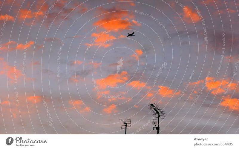 canopy Air Sky Sky only Clouds Sunrise Sunset Sunlight Town Airport Antenna Transport Means of transport Aviation Airplane Passenger plane aircraft noise