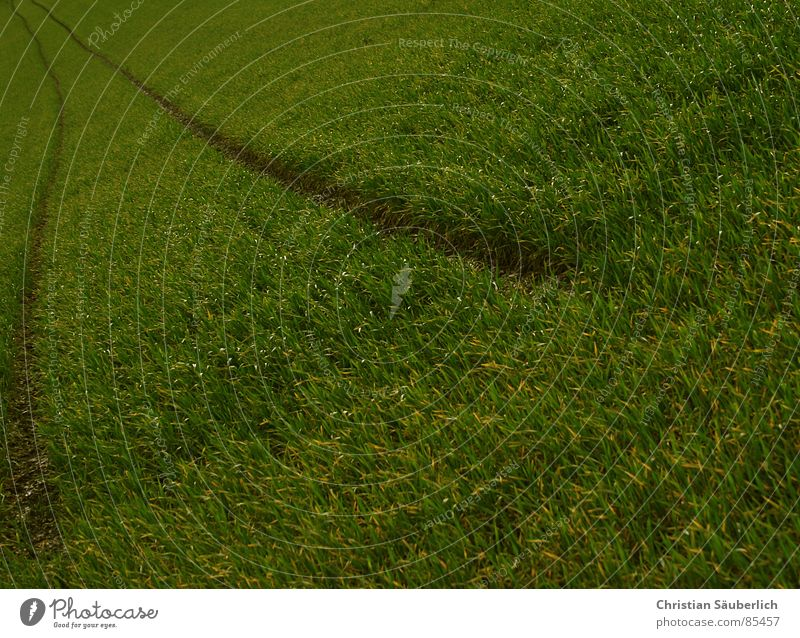 Green Clouds Meadow Grass Landscape Air Field Lawn Pasture Agriculture Paradise Planet Contract Green space