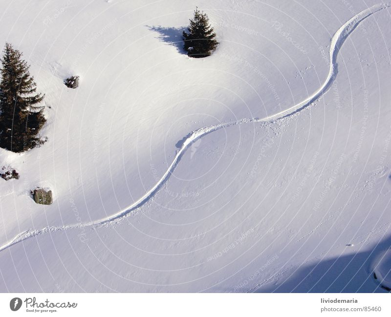 Winter Snow Sports Stone Leisure and hobbies Empty Threat Seasons Tree trunk Image Curve Arch Downward Exposure Skier Winter sports