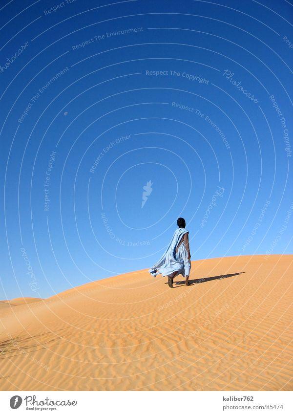 Loneliness Africa Desert Tracks Longing Beach dune Sahara Mauretania