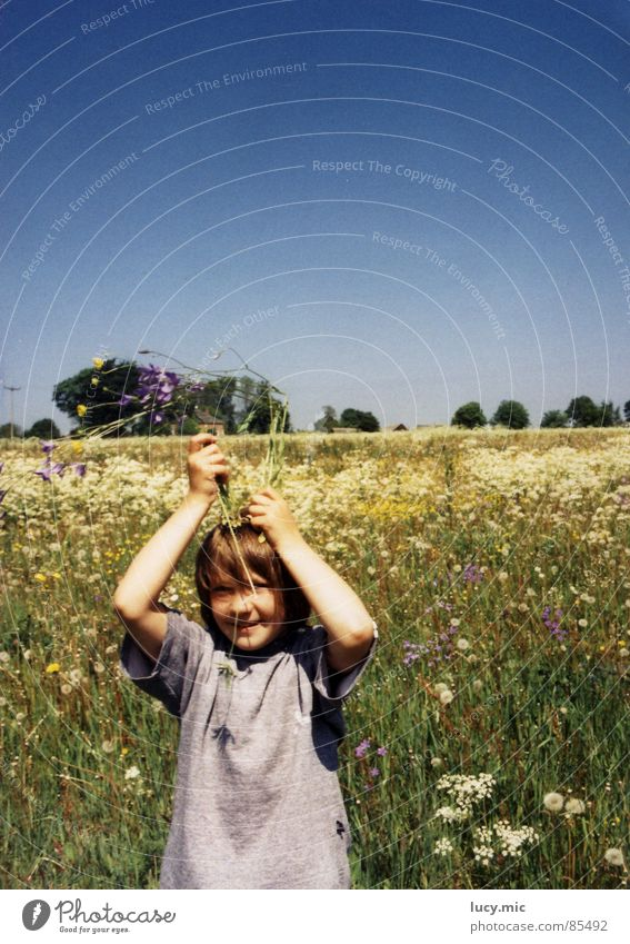Child Flower Summer Joy Meadow Peace Flower meadow