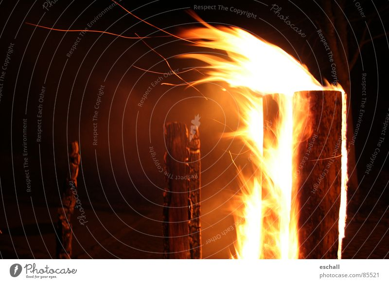 Warmth Wind Blaze Flying Fire Romance Physics Hot Burn Tree trunk Flame Spark Ignite Rustling Incandescent