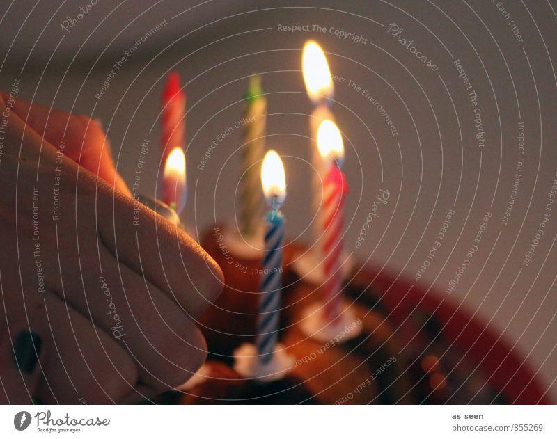 Human being Hand Senior citizen Happy Feasts & Celebrations Party Glittering Design Illuminate Infancy Birthday Beginning Warm-heartedness Fingers Friendliness