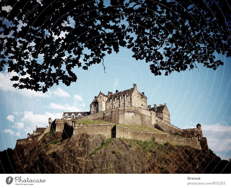 The Castle Museum Architecture Leaf Hill Rock Edinburgh Edinburgh Castle Great Britain Scotland Europe Town Capital city Downtown Manmade structures Building