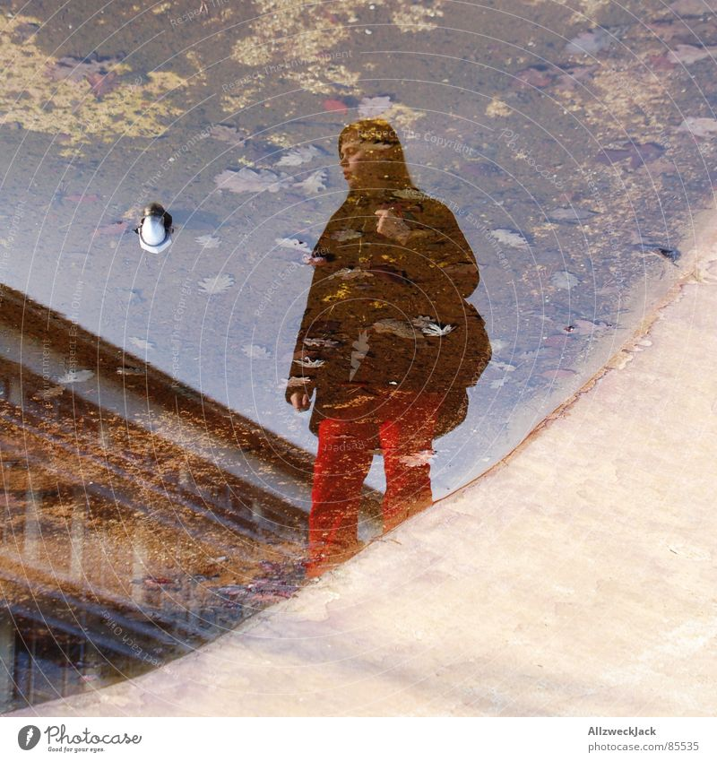 mainstream Puddle Woman Feminine Water Wet Mirror image Grief Distress Boredom Concentrate puddle case Reflection Distorted Looking Self portrait