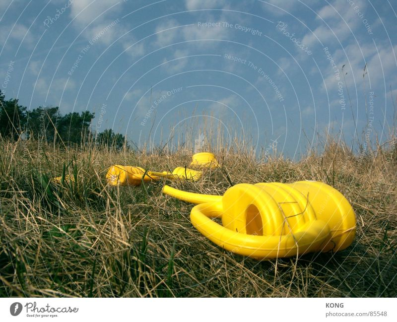 what was left. Lie Yellow Jug Meadow Grass Sky blue Fatigue Blade of grass Watering can Clouds Green space Plastic Clearing Glade Spring Obscure Multiple