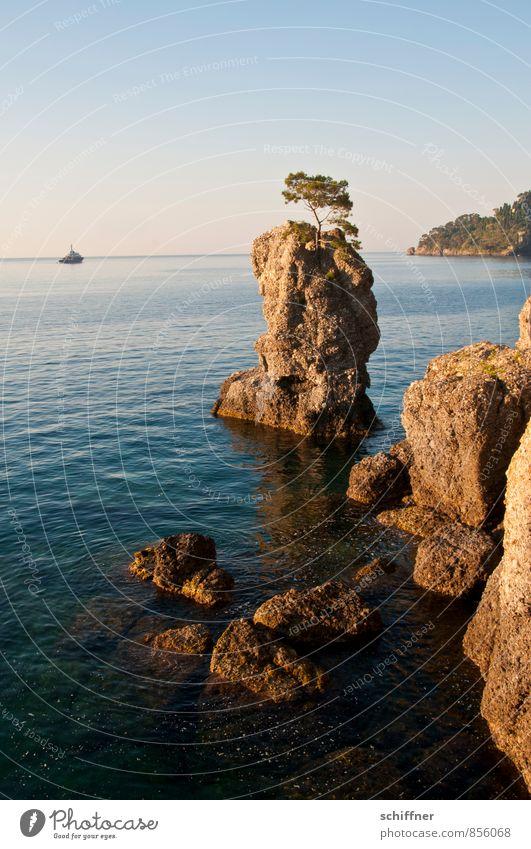 EINBAUM Landscape Tree Rock Waves Coast Bay Reef Ocean Yacht Motorboat Kitsch Individual Rock formation Vacation & Travel Italy Portofino Relaxation Calm