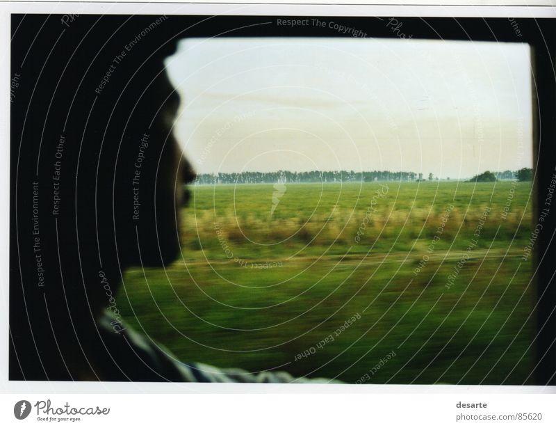 ventanilla Concentrate amanecian plantación Cordoba contraluz verde ventana viaje train