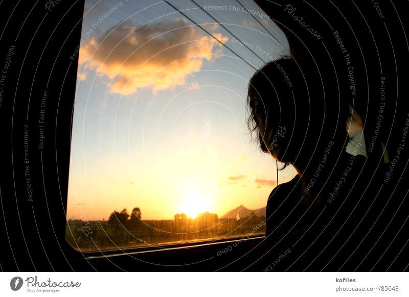 all ends Railroad Grief Sky Sunset Driving Vacation & Travel Evening Distress train sad Sadness melancholy Short vacation Traffic infrastructure Trip