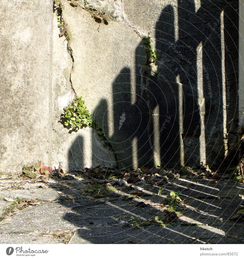 Zaungast play Fence Wall (barrier) Wood Brittle Wall (building) To break (something) Shadow Shadowy existence Edge Darken Furrow Crack & Rip & Tear Derelict