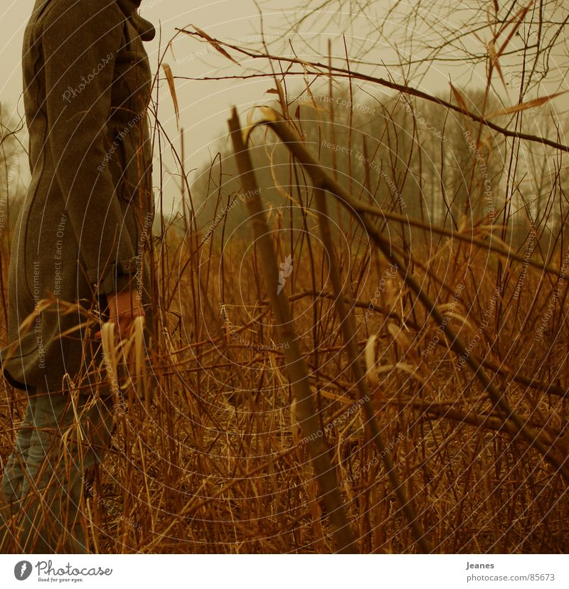 Woman Red Loneliness Yellow Far-off places Colour Forest Autumn Freedom Air Brown Field Blonde Wind Search Empty