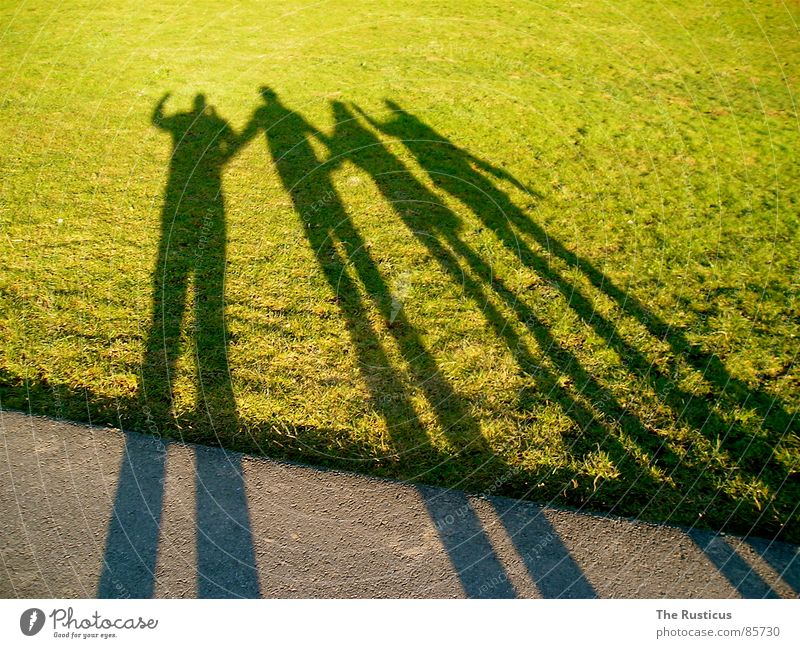 Green Joy Meadow Grass Friendship Lawn 4 Pasture Lust Society Consistent Agreed Shadowy existence