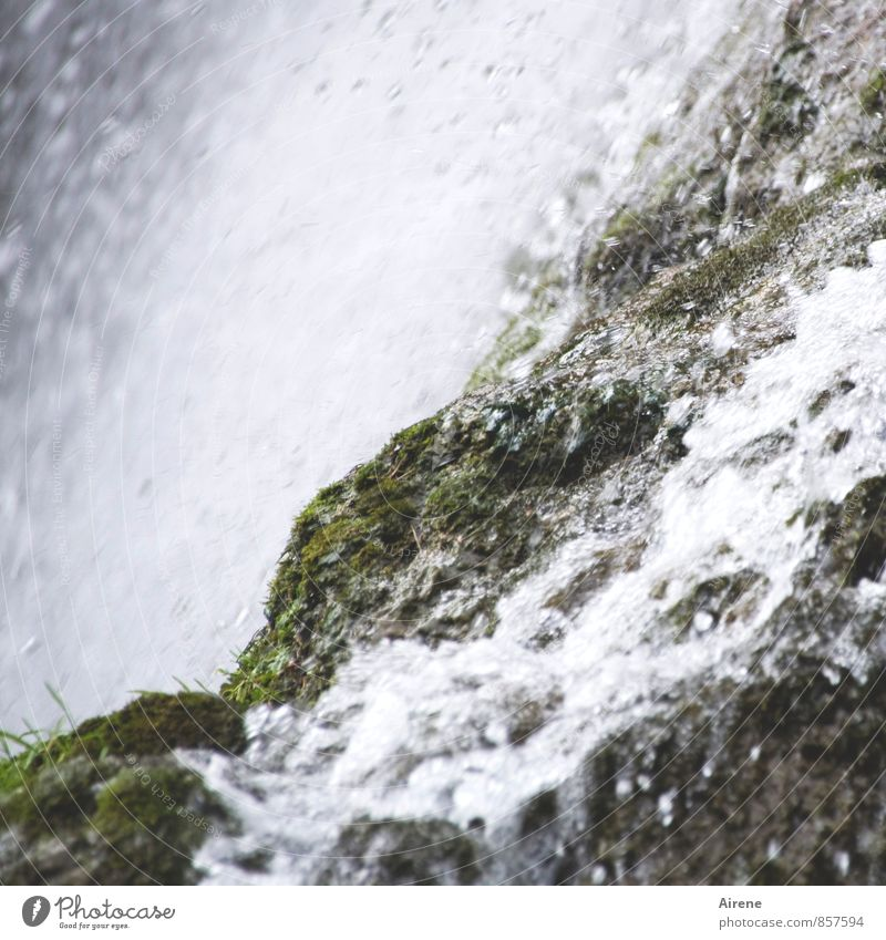 Nature Green White Water Landscape Environment Mountain Movement Grass Natural Gray Rock Power Fresh Drops of water Wet